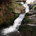 鳴滝にある「鳴滝」