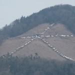 白い大文字(東日本大震災追悼) 3月