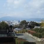 仲恭天皇陵 参道からの眺め