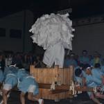 県祭り 梵天渡御 ぶんまわし
