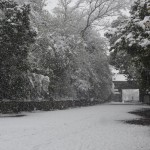 泉涌寺の雪景色