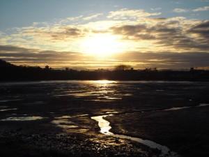 広沢池からの朝日