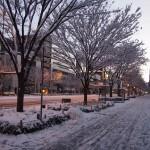 御池通の雪