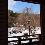 宝筐院の雪景色