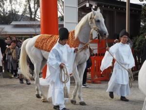上賀茂神社の白馬奏覧神事