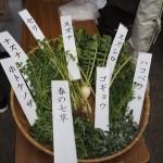 上賀茂神社 七草粥