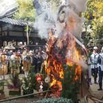 新熊野神社 左義長 1月