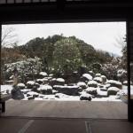 妙満寺 1月