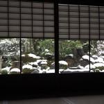 妙満寺 雪の庭