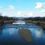 賀茂川 1月