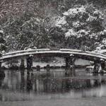 渉成園の雪景色