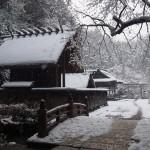 日向大神宮 1月
