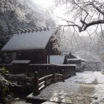 日向大神宮の雪景色