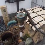 茶碗子の水