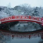 神泉苑 雪景色