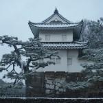 二条城 雪景色