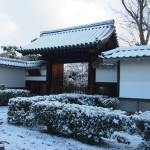 妙心寺 雪景色