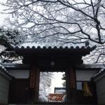 雪の五智山蓮華寺