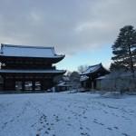 仁和寺 雪の境内