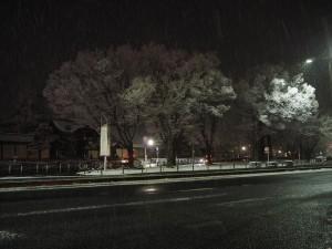 東本願寺前 26日夜