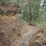 瓜生山への山道