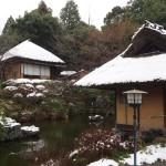 青龍苑の雪