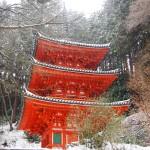 岩船寺 2月