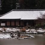 浄瑠璃寺 2月