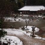 浄瑠璃寺 雪景色