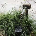 三千院 華厳音愛の手水鉢