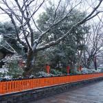 祇園白川の雪