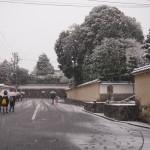 東福寺界隈