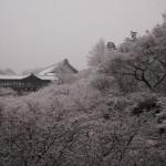 東福寺 2月