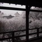 東福寺 通天橋の雪景色