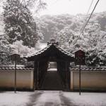 東福寺 偃月橋の雪