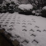東福寺 雪の方丈庭園 北庭