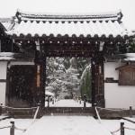 東福寺 芬陀院