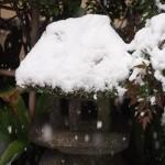 東福寺 芬陀院 屑家形石灯篭