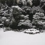 東福寺 芬陀院 鶴亀の庭