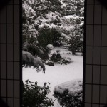 東福寺 芬陀院 丸窓
