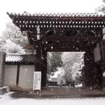 雪の泉涌寺