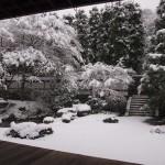 泉涌寺 御座所庭園の雪景色