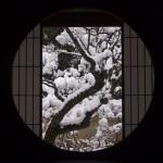 雲龍院 雪の丸窓