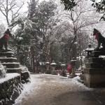 伏見稲荷大社 雪景色
