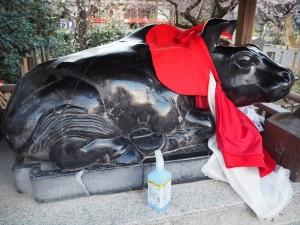 北野天満宮 牛の像と消毒液