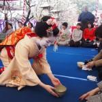梅花祭 野点茶席