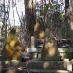 大岩神社 お塚
