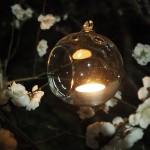梅苑のライトアップ