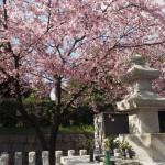 安倍晴明墓所 3月