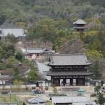 双ヶ丘からの仁和寺